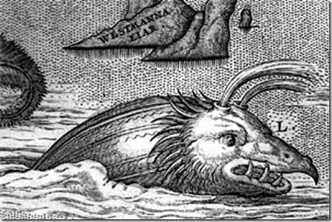 1603 map sea monster