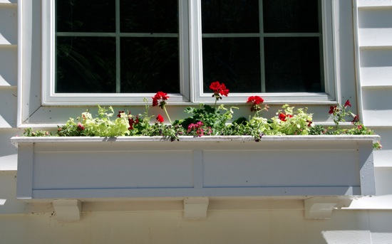 Windowbox2012 4