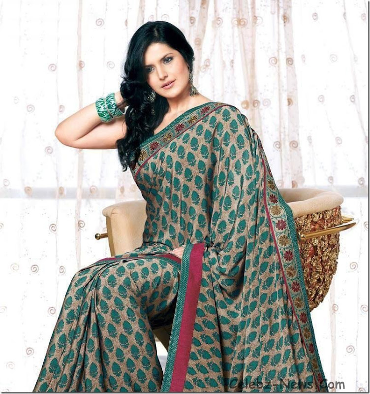 zarine-khan-saree-5