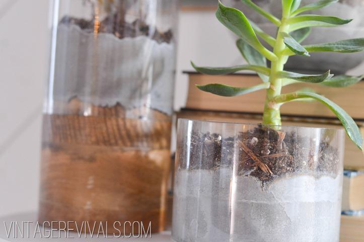 Concrete and Glass Succulent Planter vintagerevivals.com-5