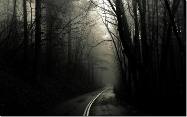 Florestas sombrias (12)