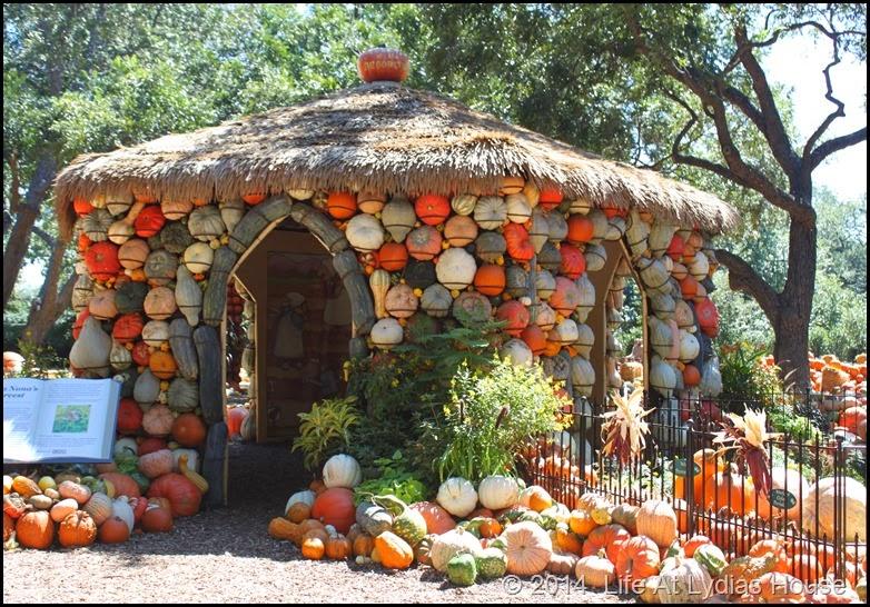 Dallas Arboretum - pumpkin festival-pumpkin house 1