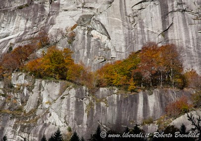 14-2014-11-01_Val di Mello (69)
