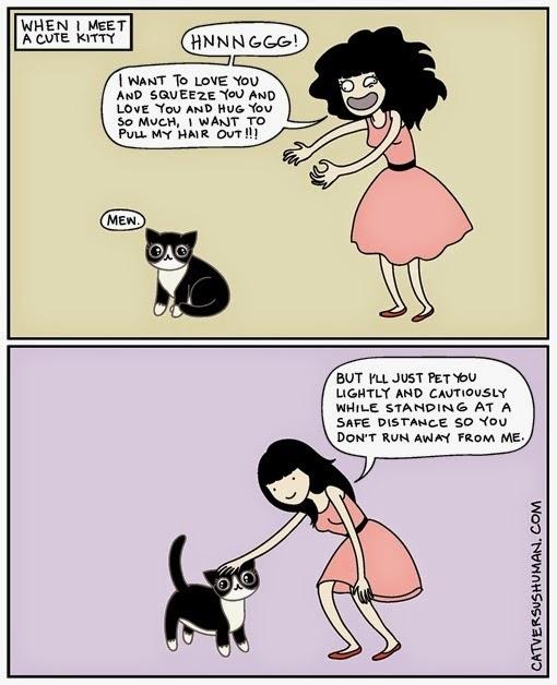 via Cat vs. Human