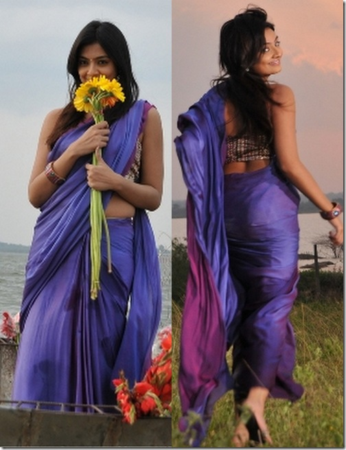 Nikitha_Narayan_Purple_Saree