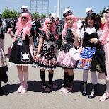 pink wig team in Toronto, Ontario, Canada