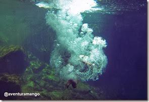 Mergulho no Encanto Azul - Riachão, MA