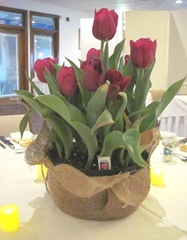 Kelly and Geno at bridal shower 4.20.2013 centerpiece tulips