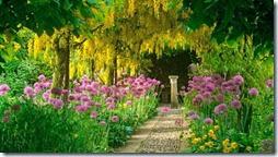 arboles con flores (6)