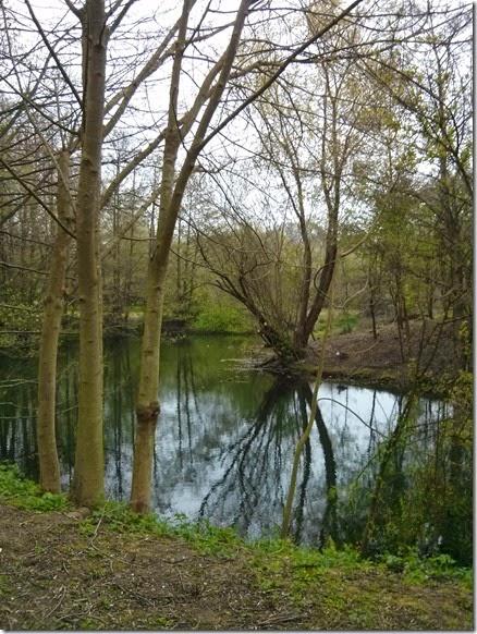 Warwick University Nature Park