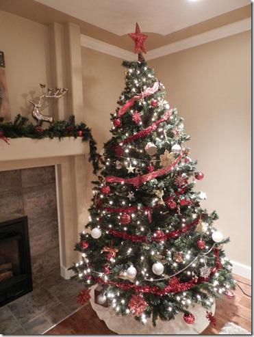 2012 Christmas 037