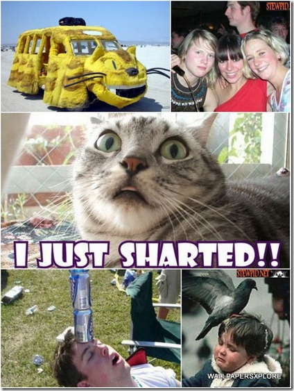 100 World Best Funny Photos Collection { SET-14 }