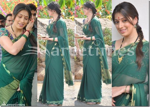 Lakshmi_Rai_Green_Sari