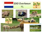 ZOO Overlooun - NL