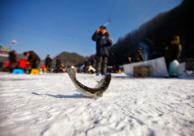 sancheoneo-ice-festival-9