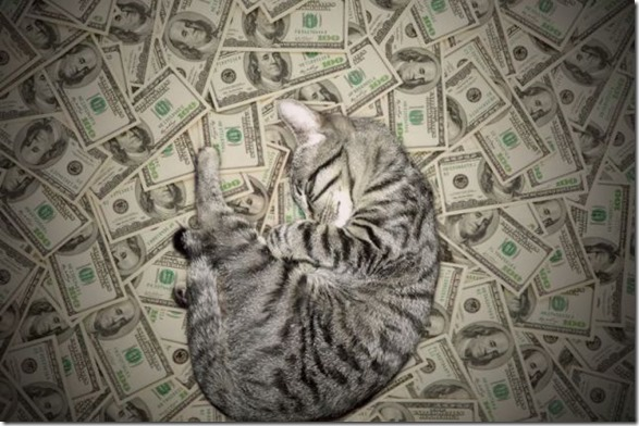 rich-wealthy-cats-19