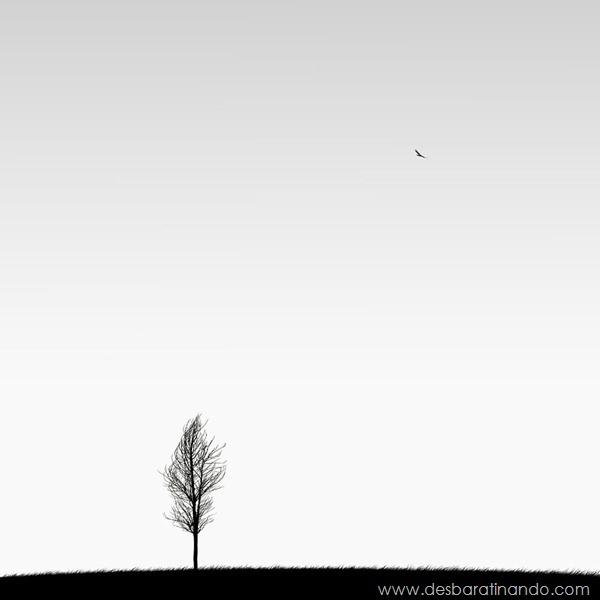 fotos-minimalistas-preto-branca-minimalist-black-white-photography-hossein-zare-desbaratinando (5)