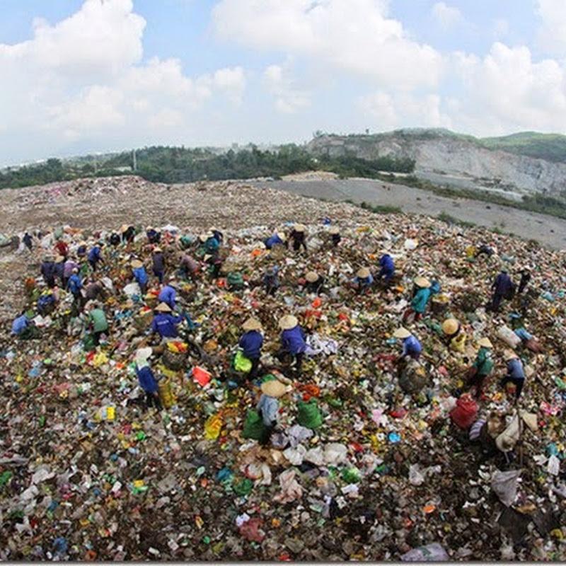 Những người 'gom' Tết trên bãi rác