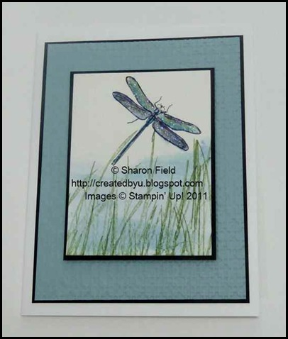 4.dragonfly_in_Grasses_watercolor_reinker_technique_Sharon_Field