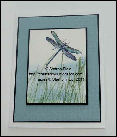 4.dragonfly_in_Grasses_watercolor_reinker_technique_Sharon_Field
