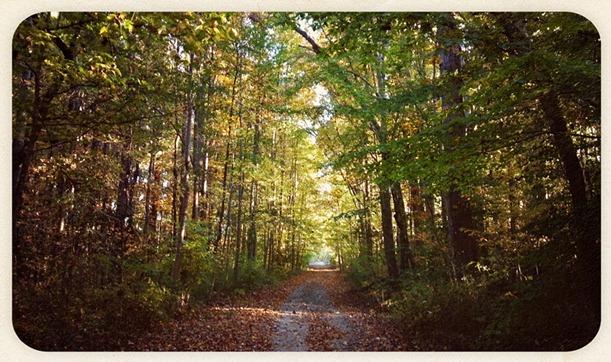 2012-10-22_17-11-52_914 copy 2