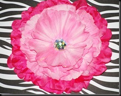 Hot Pink and Pink Peony (1)