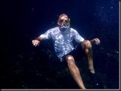 Underwater Robin