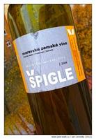 spigle_2008