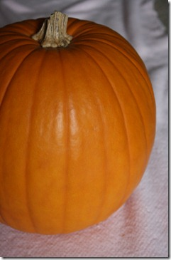 pumpkincarving 002