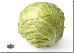 30-green-cabbage[2]