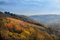 autunno2.jpg