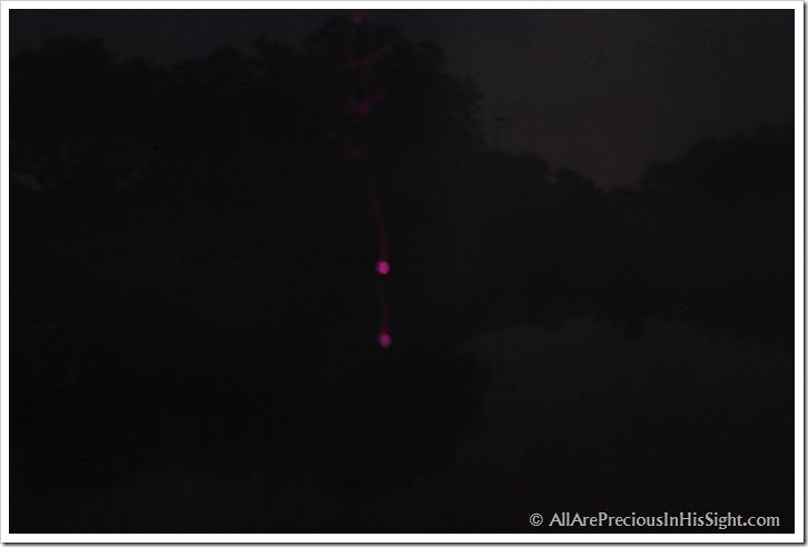 2012 good camera pics 245