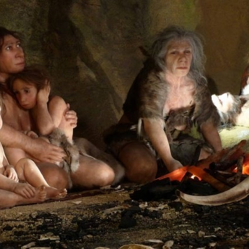Os 10 equívocos mais comuns sobre o homem de Neandertal