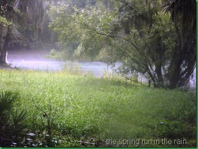 Runnin' in the rain 038