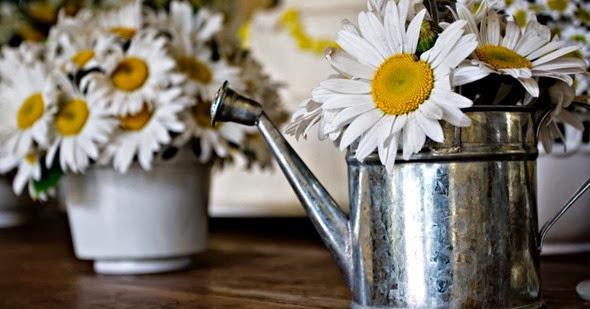 margaridas-em-vasos-de-regadores-decoracao-feita-pela-mariana-bassi-flores-e-eventos-wwwmarianabassicombr-1349210653361_956x500