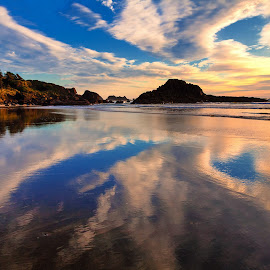 Oregon Coast by Tom DiMatteo - Landscapes Waterscapes