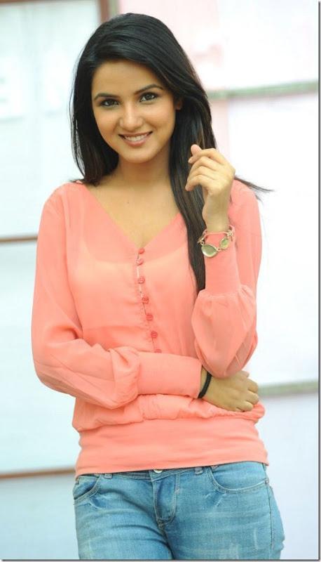 Actress Jasmine at Dilunnodu Press Meet Stills
