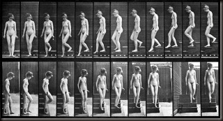 Muybridge - Woman walking down stairs