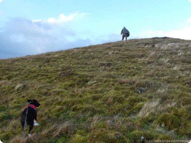climbing heaplaw