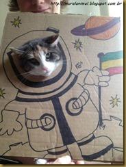 cartao-gatos (5)