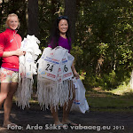 28.07.12 Eesti Ettevtete Suvemngud Roostal - pev II - AS20120728FSSM_095V.jpg