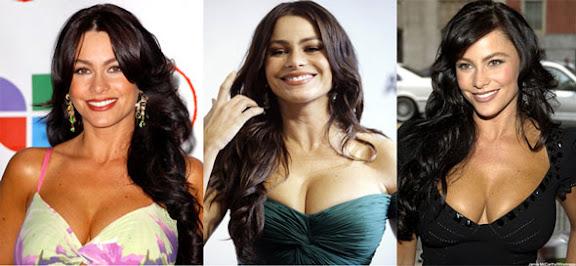 Será que as fotos roubadas de Sofia Vergara serão divulgadas na internet, assimo como foi a da atriz brasileira Carolina Dieckmann e outras famosas.