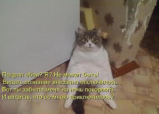 f9c7e532631614ef63db7fc37be_prev