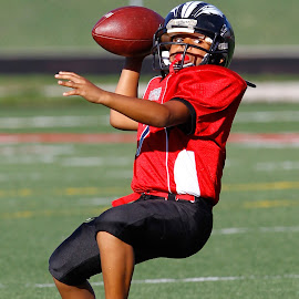 by Belinda Stevens - Sports & Fitness American and Canadian football (  )