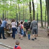 Wildpark-PF_2012-04-29_993.JPG