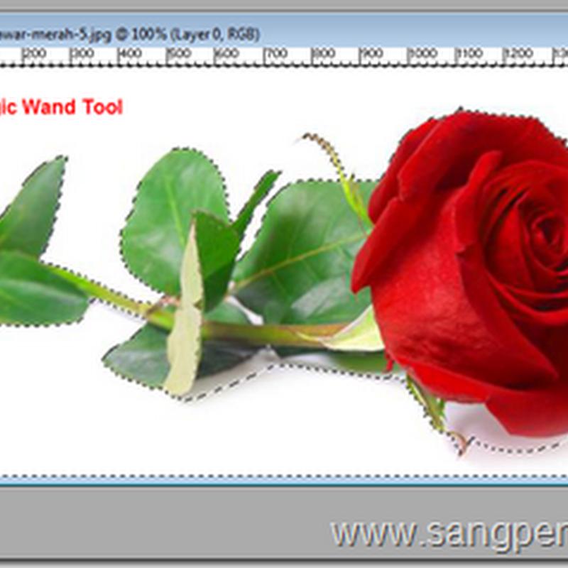Menggunakan Magic Wand Tool pada Photoshop