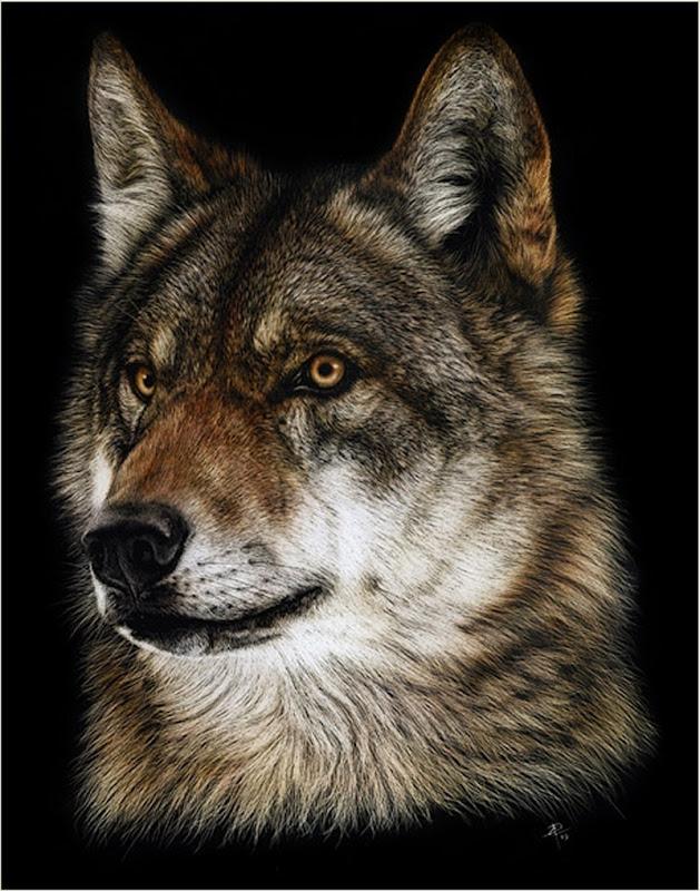 wolfstudy