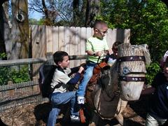 5-25-2011 zoo field trip 020