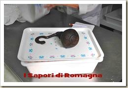 I Sapori di Romagna - Galantina 9.jpg