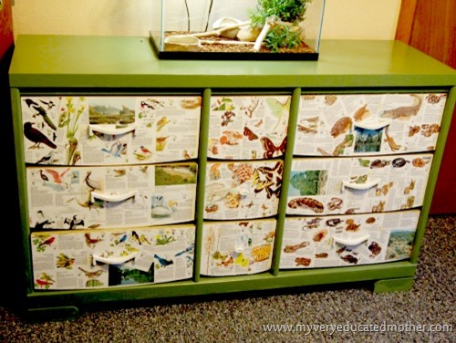 wildlifedresser   #modpodge #dresser #crafting #furniture